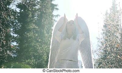 bewijsgronden, witte engel