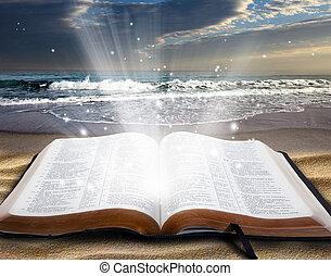 bijbel, strand