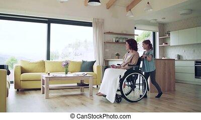 binnen, meisje, home., wheelchair, kleine, grootmoeder, senior, haar