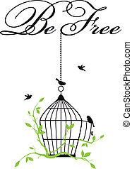 birdcage, open, vogels, kosteloos