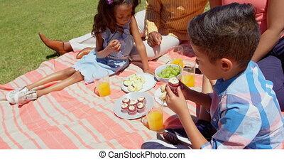 black , park, hebben, aanzicht, gezin, zonnige dag, voorkant, picknick, 4k