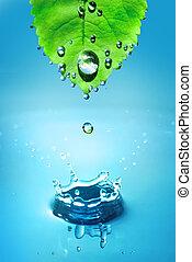 blad, water, groene, druppels, sp