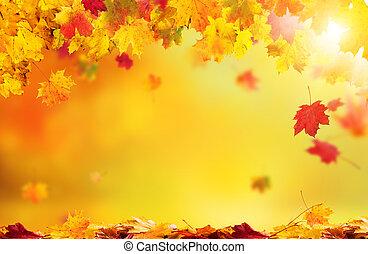 bladeren, achtergrond, het vallen, herfst, abstract