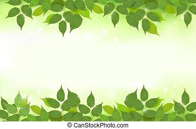 bladeren, achtergrond, natuur, groene
