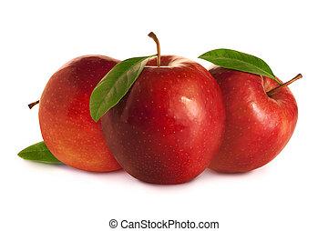 bladeren, boompje, appeltjes , rood