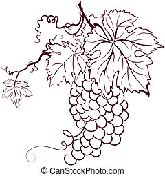 bladeren, druiven