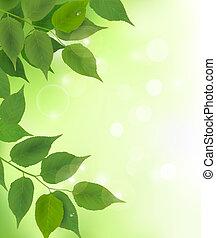 bladeren, fris, achtergrond, groene, natuur