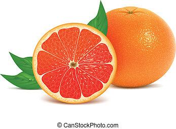 bladeren, fris, grapefruits