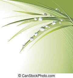 bladeren, groene, waterdrops
