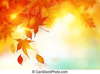 bladeren, herfst, het vallen