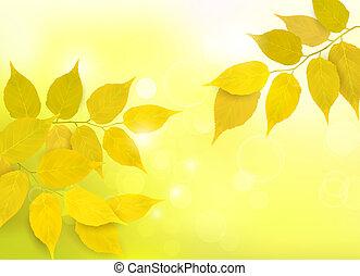 bladeren, natuur, achtergrond
