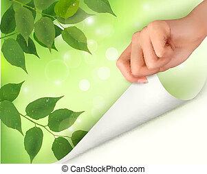 bladeren, natuur, achtergrond, groene