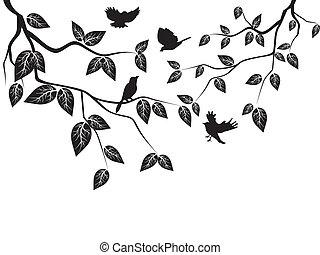 bladeren, vogels
