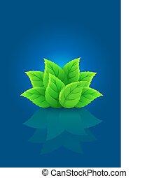 blauw groen, blad, achtergrond, groep
