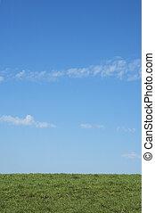 blauw groen, gras, hemel, achtergrond