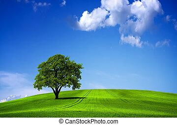 blauw groen, hemel, landscape, natuur