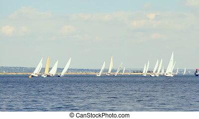 blauwe , bootjes, s, zee, zeilend