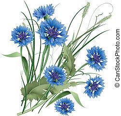 blauwe , bouquetten, leaves., wildflowers, groene, cornflowers, bos