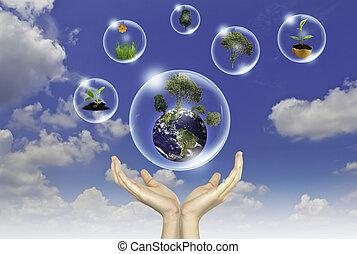 blauwe , concept, eco, zon, hemel, tegen, hand, bloem, :, aarde, bellen, houden