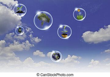 blauwe , concept, zakelijk, punt, eco, zon, hemel, tegen, hand, boompje, bloem, aarde, bellen, :