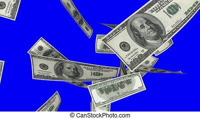 blauwe , dollars, scree, het vallen, (loop