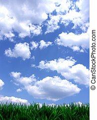 blauwe , fris, hemel, groene, gras