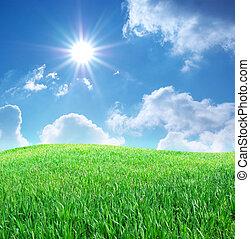 blauwe , gras, hemel, diep
