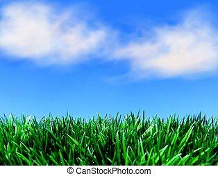 blauwe hemel, gras, groene