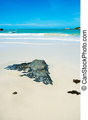 blauwe hemel, strand rots