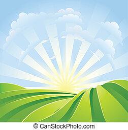blauwe , idyllisch, velden, zonneschijn, hemel, stralen, groene