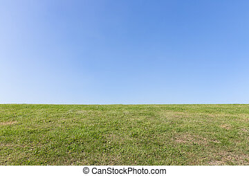 blauwe , natuur, hemel, achtergrond, groen gras