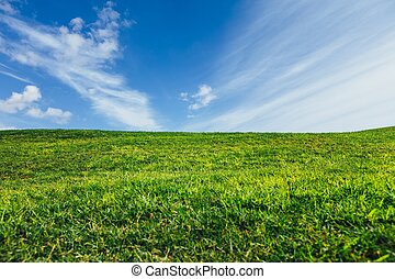 blauwe , natuur, hemel, groene achtergrond, gras