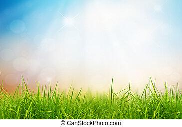 blauwe , natuur, lente, hemel, back, achtergrond, gras