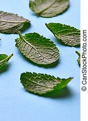 blauwe , natuurlijke , bladeren, water, achtergrond., opmaak, druppels, munt