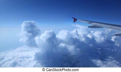 blauwe , schaaf, hemel, vleugel, tegen