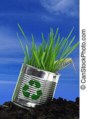 blauwe , terrein, hemel, groenteblik, groeiende, gras