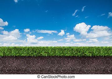 blauwe , terrein, vertolking, groene, sky., gras