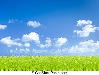 blauwe , velden, hemel, groene achtergrond, gras