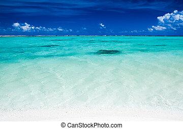 blauwe , vibrant, hemel, oceaan, tropische , kleuren