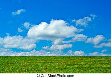 blauwe , wolken, hemel, groen veld, witte