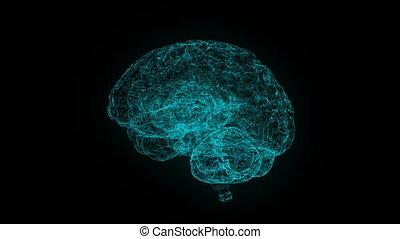 blauwe , xray, stijl, menselijk, render, wetenschap, beeld, rotating., motie, hersenen, achtergrond, technologie, abstract, futuristisch, 3d