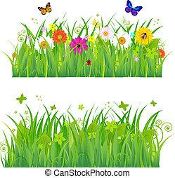 bloemen, gras, insecten, groene