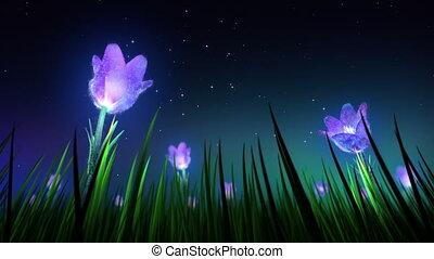 bloemen, lus, nacht