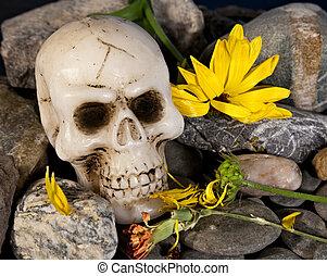 bloemen, schedel