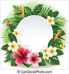 bloemen, tropische