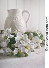 blossom , bloemen, appel, achtergrond, kruik