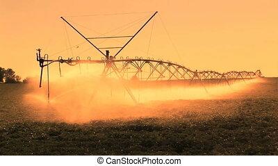 boerderij, irrigatie