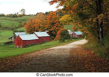 boerderij, jenny