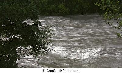 bomen., river., aanzicht, door, overstroming