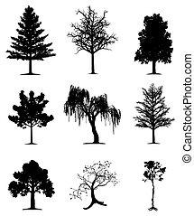 bomen, verzameling
